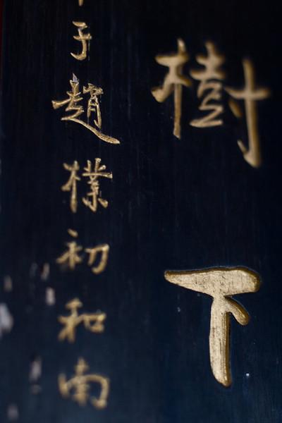 China_NGingold_06