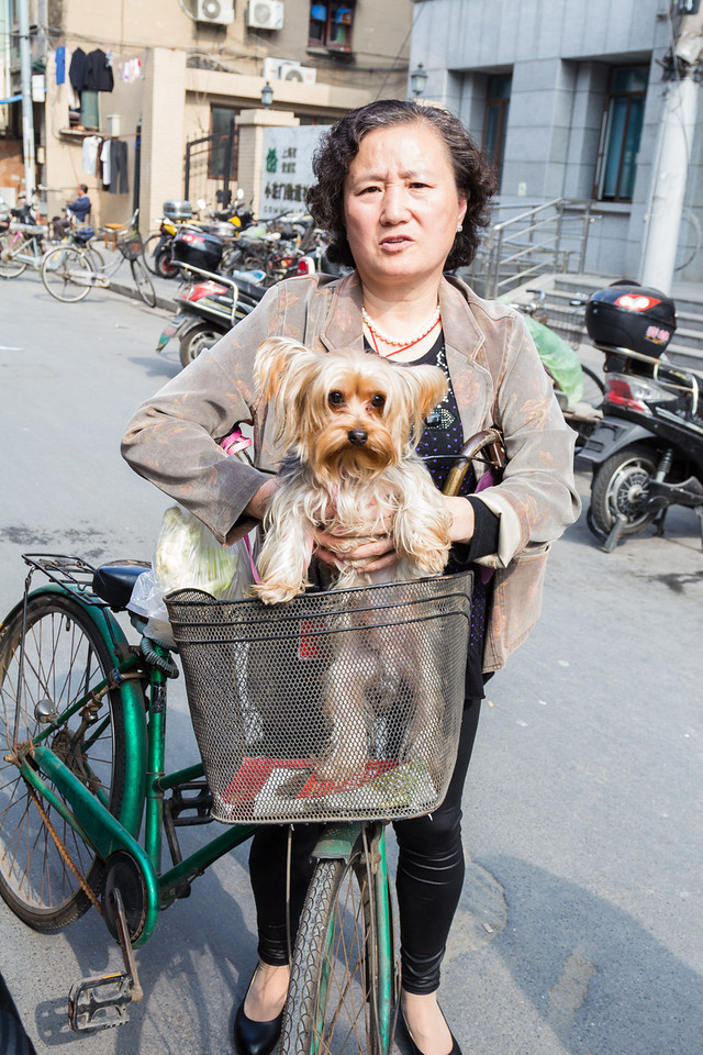 In Shanghai, pets are treated as kids and travel with the owners everywhere