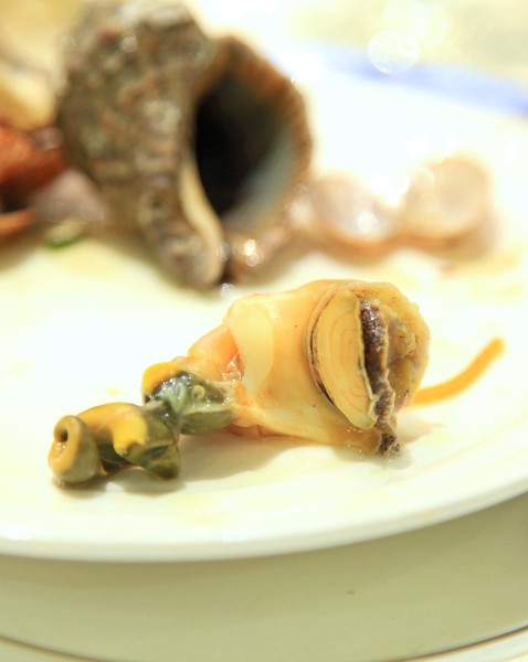 Shellfish - Qingdao