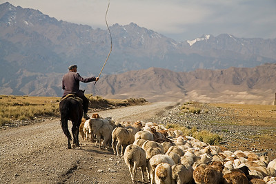 A Kazik Shepherd, Xinjiang