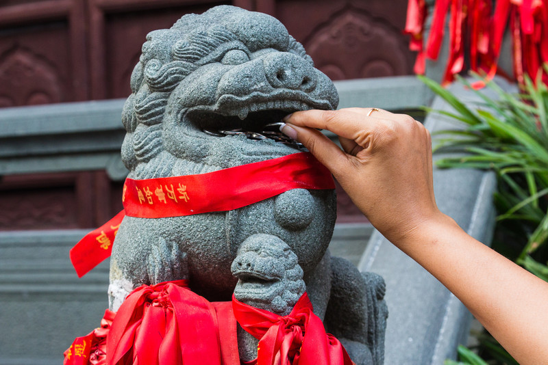 Offering a coin in the mouth of the lion for good luck.