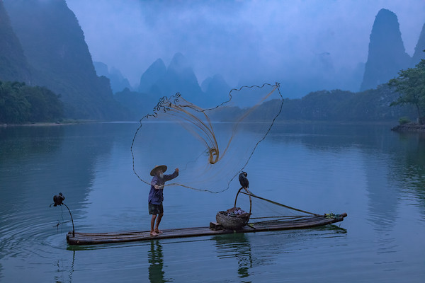 Cormorant fisherman casts his net - along the Li River near Guilin, China.