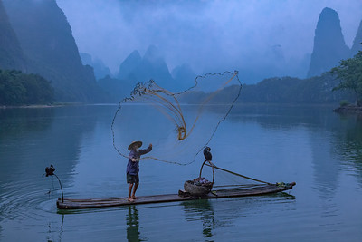 Cormorant fisherman casts his net - along the Li River near Guilin, China.