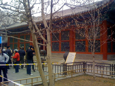 The Chinese magnolias in the Empress' Court were days away from full bloom.