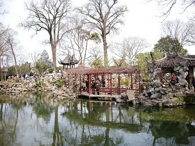 Lion's garden 2