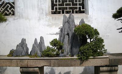 Lingering garden banzai