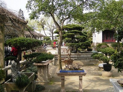 Banzai Garden in Sudzhou