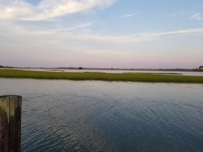 Chincoteague Island Vaca 2018