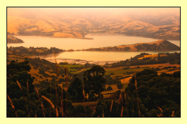 ARAKOA FROM THE TOP OF THE BANKS PENINSULA