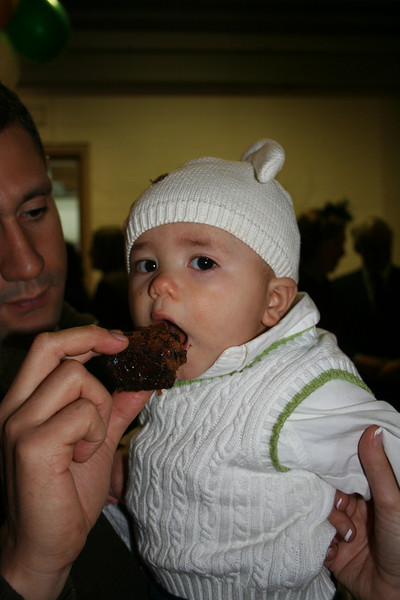 Milo's first Christmas cake