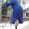 Big blue bear looking into the Denver Convention Center. Check out all that snow! It went down to single digits. Fun to be able to wear my Seattle clothes again.