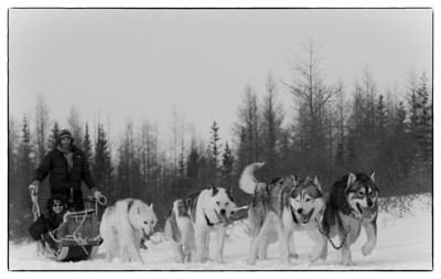 Dog Sledding B&W
