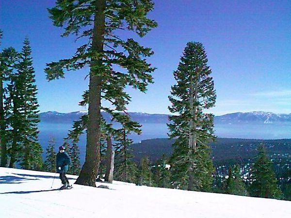 Skiing in Homewood<br /> Lake Tahoe, Ca