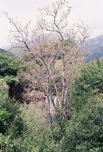 4/3/05 Grotto Trail