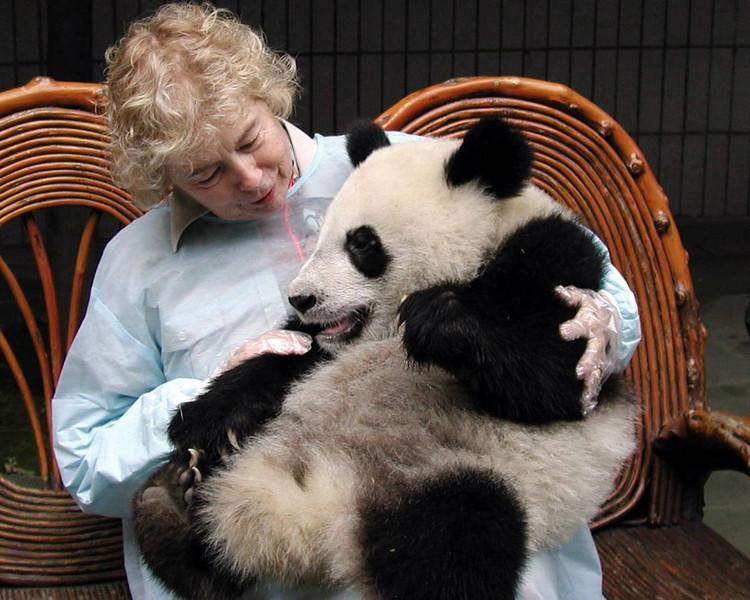 Panda Research Center, Chendu, China