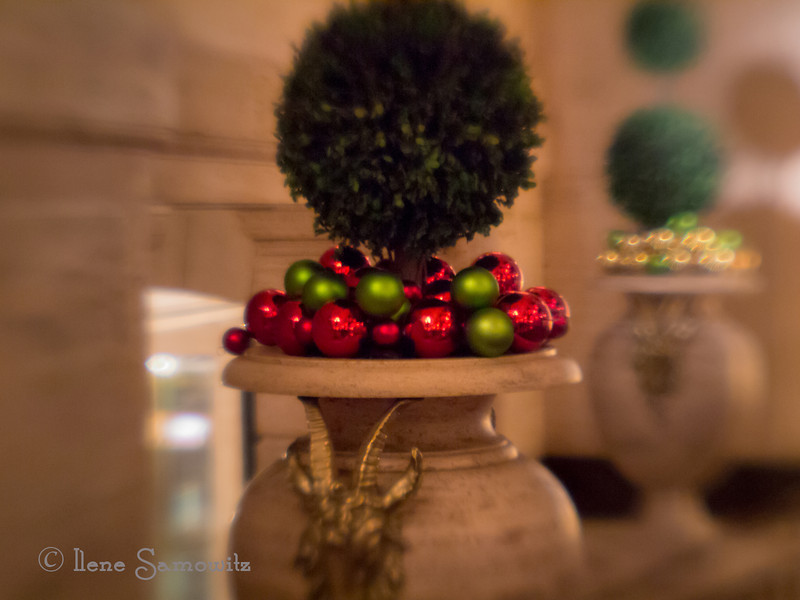11-29-13 In the Palmer House, Chicago. Playing some more with selective focus using the Lensbaby Plastic Optic. ( like a toy camera)