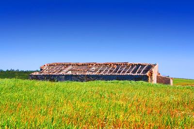 Abandoned Ruin