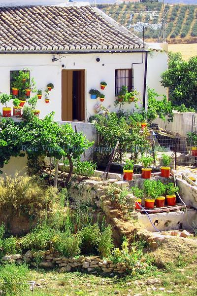 Rhonda, Spain  August 2008