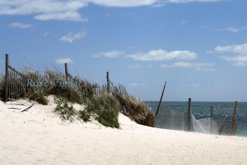 Cape Cod - May 2010