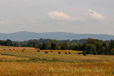 Antietam National Battlefield. Sharpsburg, Maryland