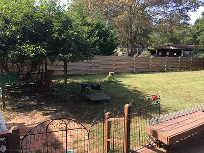 Excellent backyard for pups