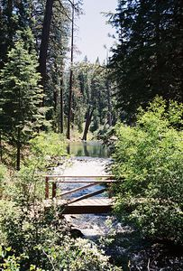 7/4/05 Foot bridge over Mill Creek along Clear Lake Loop Trail, South Warner Wilderness, Modoc National Forest, Modoc County, CA