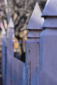 Fence in Annpolis