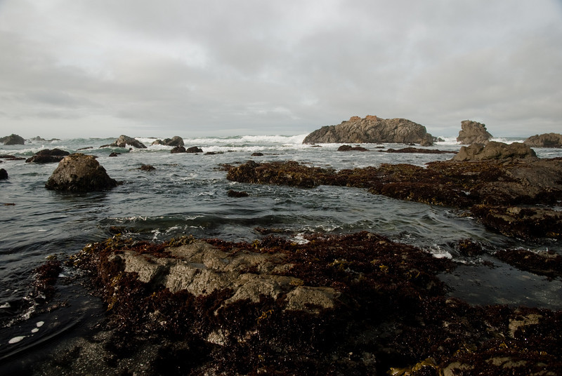 Rocks in the surf at MacKerricher State Park.