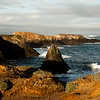 Rocks off the Mendocino coast basking in the full glory of the morning sunlight.