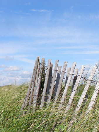 Fence at edge of beach dune, Bluff Point State Park, Connecticut.