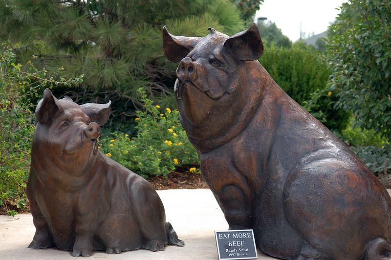 Coles Garden<br>Oct 11 2005 - NSXPO 2005 return trip