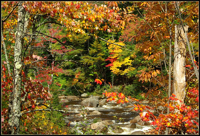 2008 Fall in New Hampshire Favorites