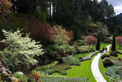 The Butchart Gardens - 2008 Favorites