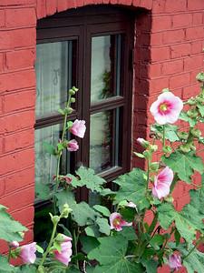 Windows of Baaring