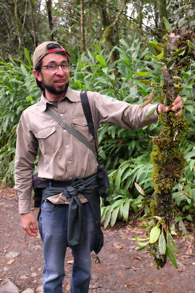 Our naturalist for the afternoon shows off a complete ecology on a vine.