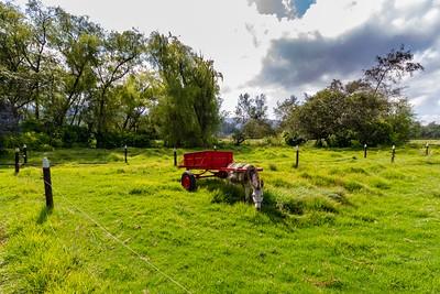 First Day in Colombia - A Trip to Magda Herrera's Farm Near Bogotá