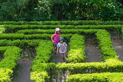 Annalise and Adrian Playing in the Maze - Mariposario Colombia