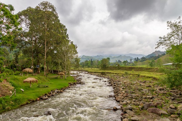 Day Trip to a Nature Reserve and Trout Farm - Coffee Region Colombia