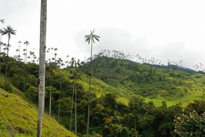 Salento, Colombia