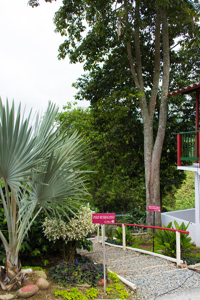 San Alberto plantation grounds