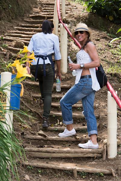 Climbing up to the coffee plants, San Alberto