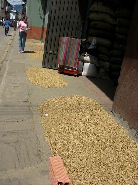 Coffee bean drying in the sun, in the middle of the sidewalk in San Gil. Why not?