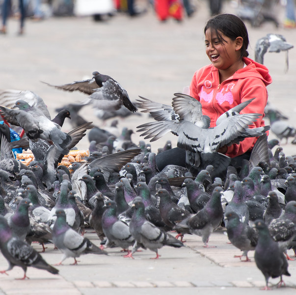 Girl plays with pigeons, Bolívar Square, Bogotá