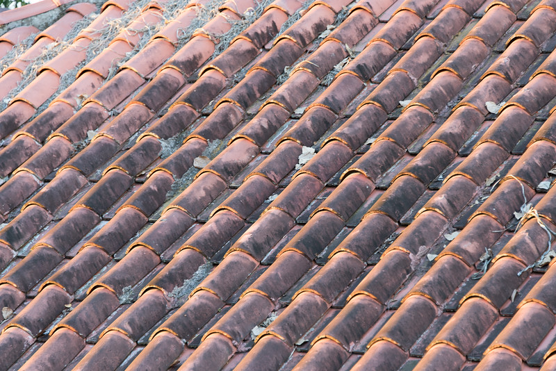 Roof tiles in the setting sun, Hacienda Bambusa