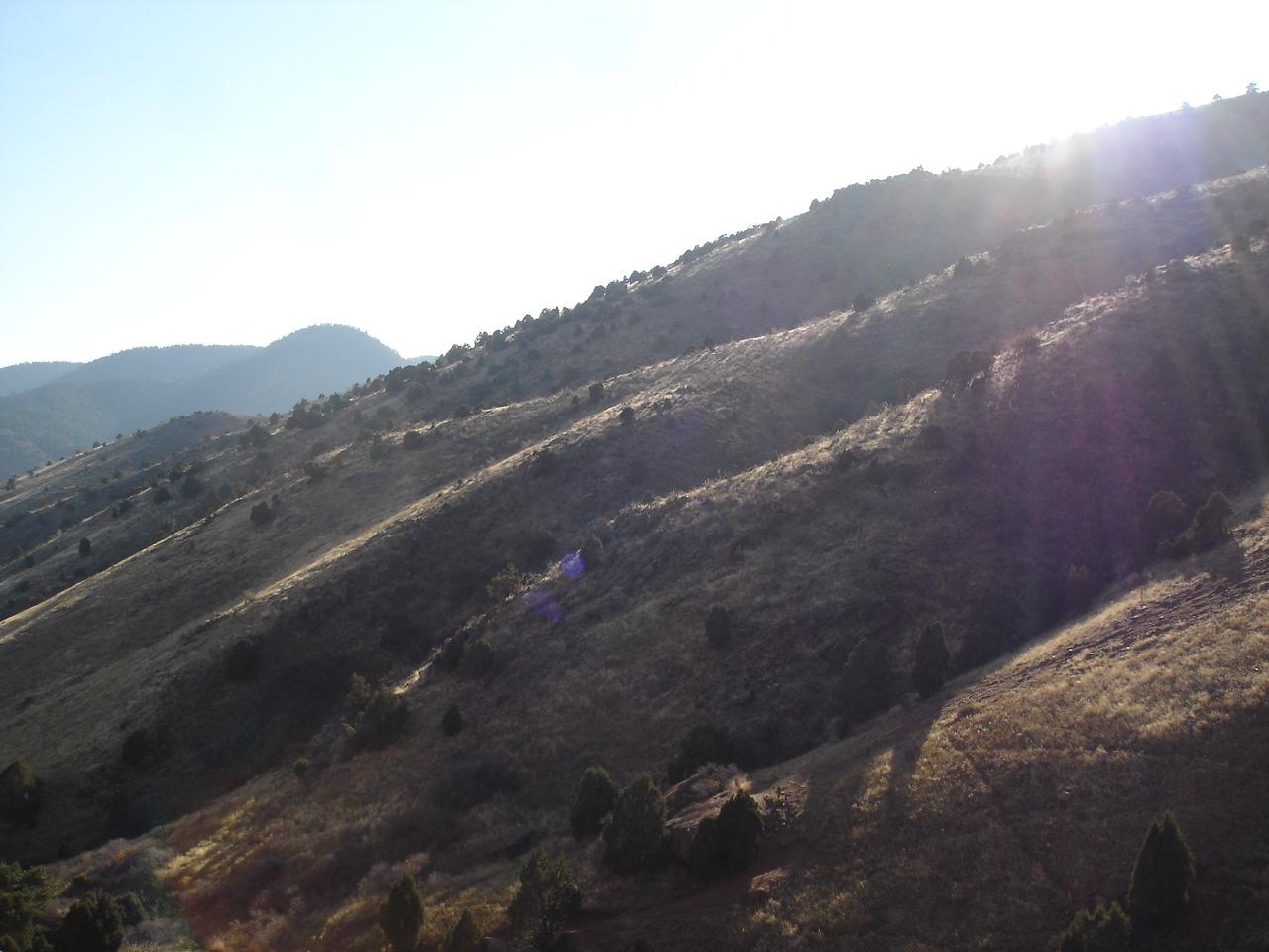Red Rocks' backyard.