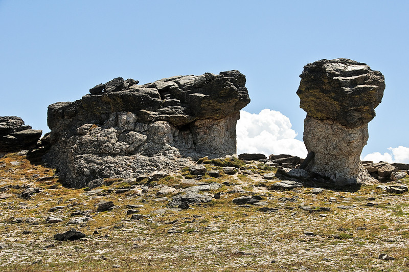 Mushroom Rocks, Trail Ridge Road, Rocky Mountain National Park, Colorado