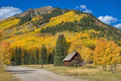 Colorado: Fall Foliage