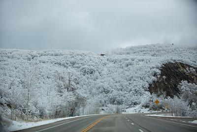 Colorado IMG_7952