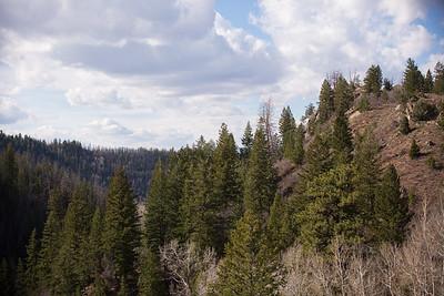 Colorado IMG_7825