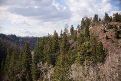 Colorado IMG_7826